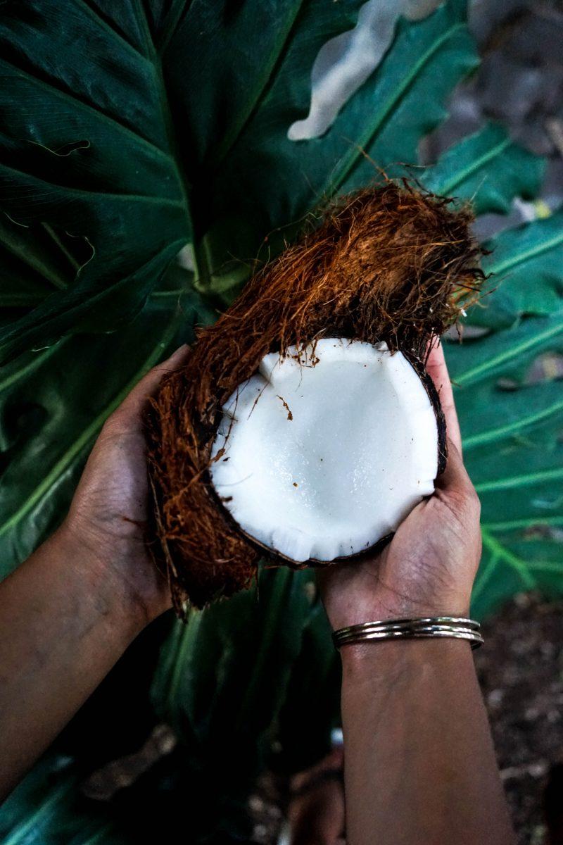 dentifrice huile de coco